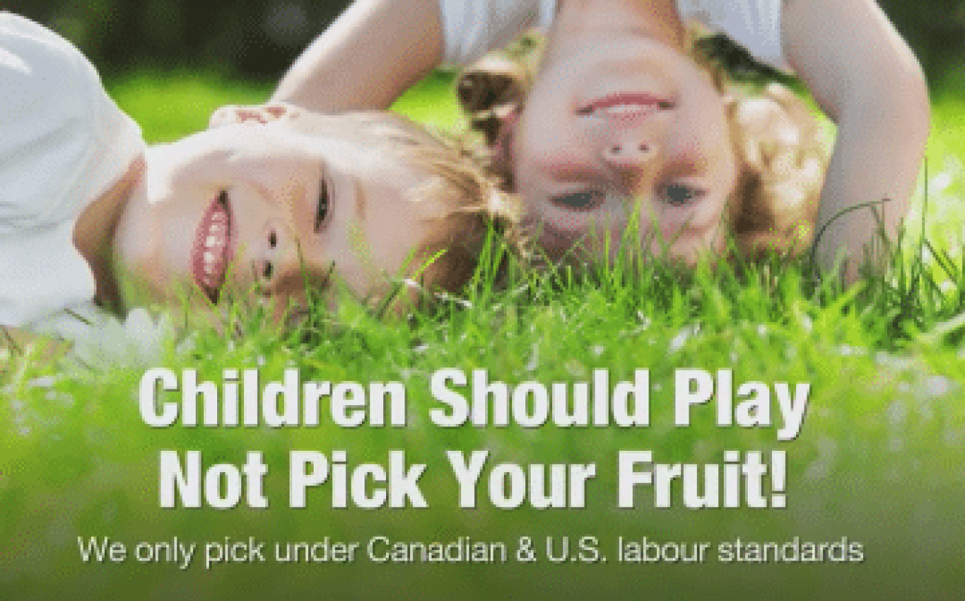 Children Should Play, Not Pick Your Fruit