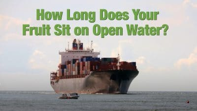 how long does your fruit sit on open water
